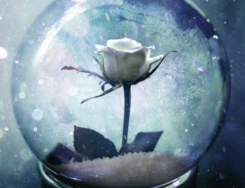 """Wintersong"" – amore, musica e magia, S. Jae Jones"